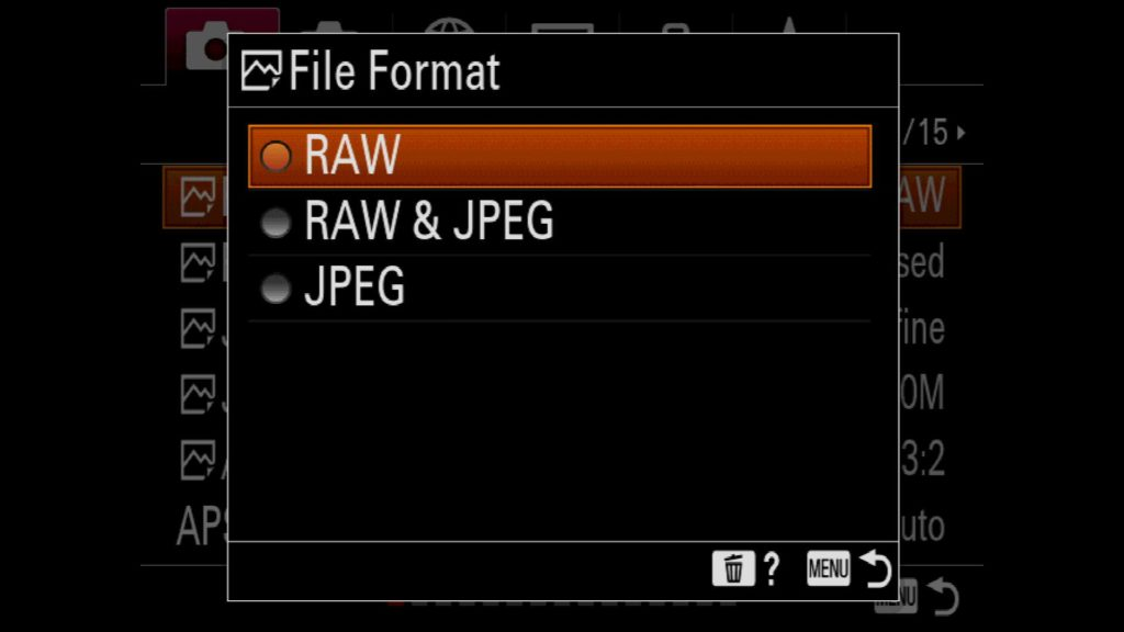 Changing File Format on Sony a7R IV to RAW